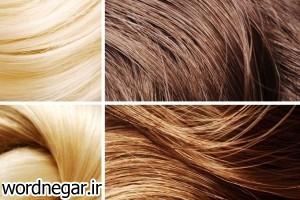 3 چند راه حل ساده برای موهایی زیبا تر آرایش مو سبک زندگی سلامت مهارت های زندگی   وردنگار