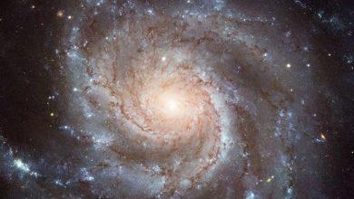 01138a9b-a342-4943-9d8a-84609369d05e-390x220 کشف سیارههایی در کهکشان دیگر به کمک روش میکرولنزینگ اختروش دانستنی های علمی دانش و فناوری   وردنگار