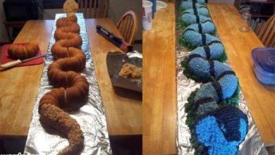 wordnegar-2-550x344-390x220 مادری خوش ذوق و هنرمند کیکی به شکل مار کبری پخت آشپزی جالب ترین ها دسرها سرگرمی کیک ها   وردنگار
