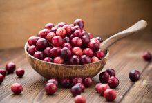 Cranberry-1024x683-220x150 مزایای سلامتی انگور و زغال اخته تغذیه سالم سلامت   وردنگار