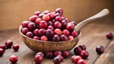 Cranberry-1024x683-390x220 مزایای سلامتی انگور و زغال اخته تغذیه سالم سلامت   وردنگار