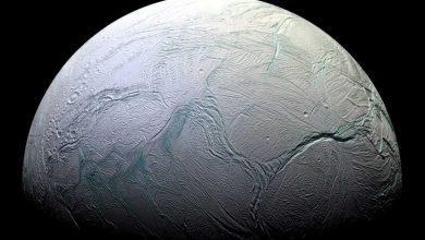 enceladus-390x220 کشف میکروب در اقیانوس های انسلادوس دانستنی های علمی دانش و فناوری   وردنگار