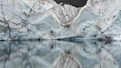 glacier-2-390x220 هشدار بیش از 20 هزار دانشمند در خصوص آینده بشریت جالب ترین ها دانستنی های علمی دانش و فناوری سرگرمی   وردنگار