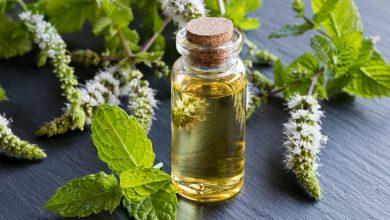 bottle-of-peppermint-essential-oil-with-blooming-peppermint-leaves-390x220 بهترین روغنهای گیاهی برای درمان آلرژی کدامند؟ سلامت طب سنتی و داروهای گیاهی مطالب سلامت   وردنگار