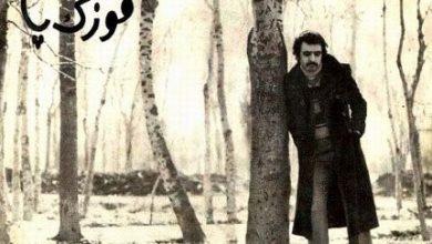fereydoonfarhad1-390x220 13 مهر ماه سالروز وفات فریدون فروغی، شاعر، نوازنده گیتار، خواننده و آهنگساز ایرانی فرهنگ و هنر موسیقی ایران   وردنگار
