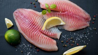 fresh-tilapia-filet-with-seasonings-e1463630189670-390x220 ماهی تیلاپیا با کلم بروکلی و لوبیای سفید آشپزی شام   وردنگار