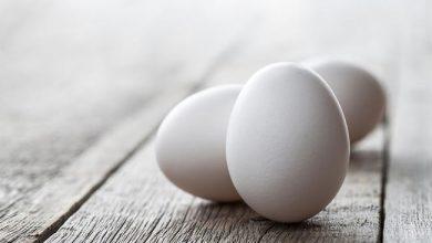 gettyimages-467849362-eggs-390x220 چالش ۳۰ روز غذای سالم: فواید تخم مرغ برای سلامتی کبد آشپزی تغذیه سالم سلامت غذاهای گیاهی   وردنگار