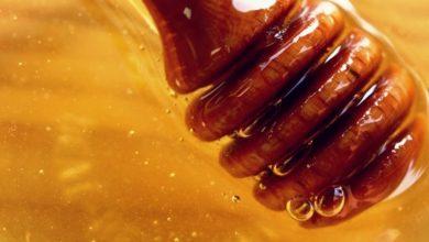 honey_dipper_close_up_shutterstock_1024-390x220 عسل مانوکا و تاثیر آن بر بیماری ها سلامت طب سنتی و داروهای گیاهی مطالب سلامت   وردنگار