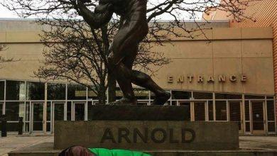 photo_2017-08-28_21-23-24-390x220 خوابیدن آرنولد شوارتزنگر در زیر مجسمه خود سینمای جهان فرهنگ و هنر   وردنگار