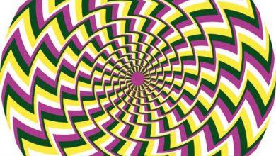 unnamed-30-390x220 15 خطای دید که ذهن شما را به چالش می کشد جالب ترین ها سرگرمی   وردنگار